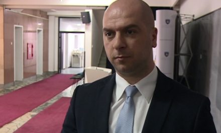 """""""Хоћемо ЗСО према споразуму а не према уставу Косова"""""""